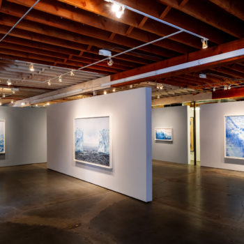 Installation view of Antarctica, Forman's 2017 Solo exhibition at Winston Wächter Seattle. Photo by Nick Pironio.