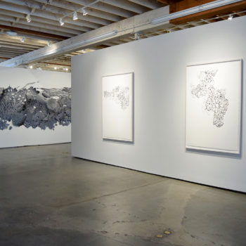 Installation view of Solid Ether