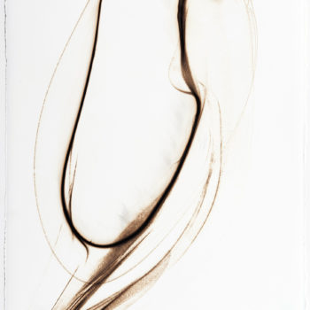 Trace 5112, 2012, Glass pyrograph on paper, 30 x 22.5 inches